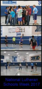 nlsw-vball-game-collage
